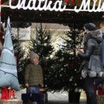 Dziecko pozuje do zdjęcia w chatce Mikołaja na tle choinek
